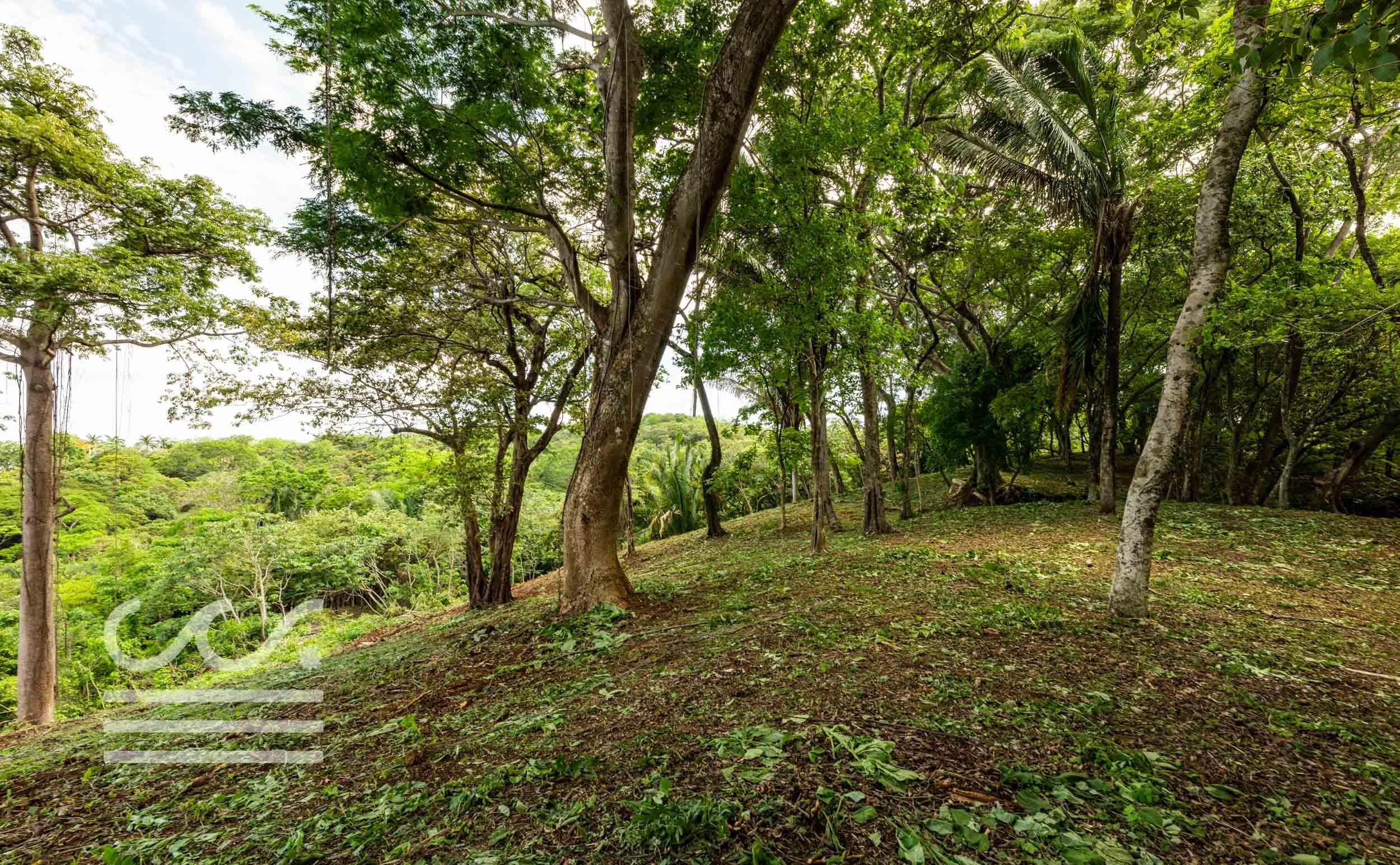 EE-102-Lot-Wanderlust-Realty-Real-Estate-Nosara-Costa-Rica-7.jpg