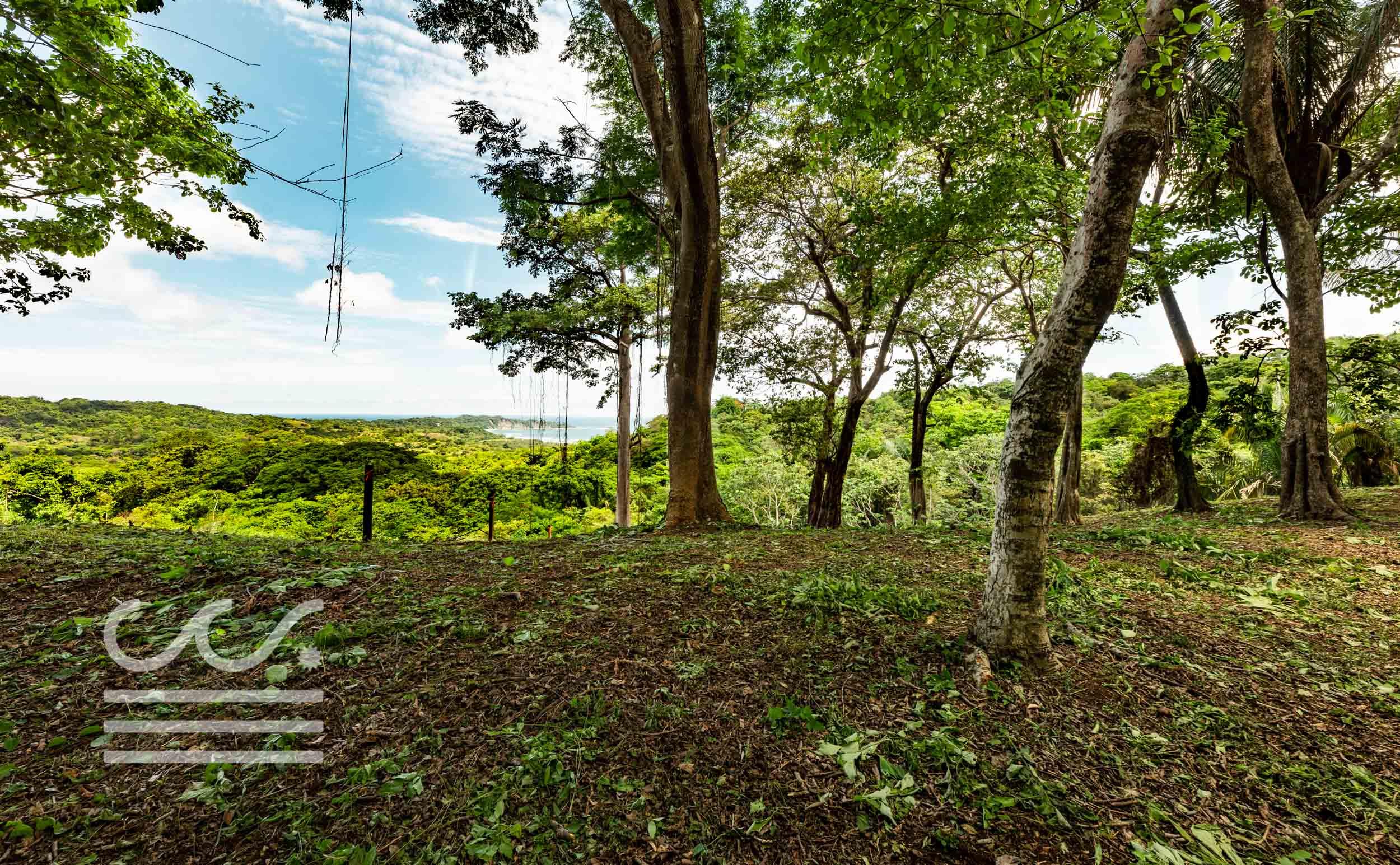 EE-102-Lot-Wanderlust-Realty-Real-Estate-Nosara-Costa-Rica-8.jpg