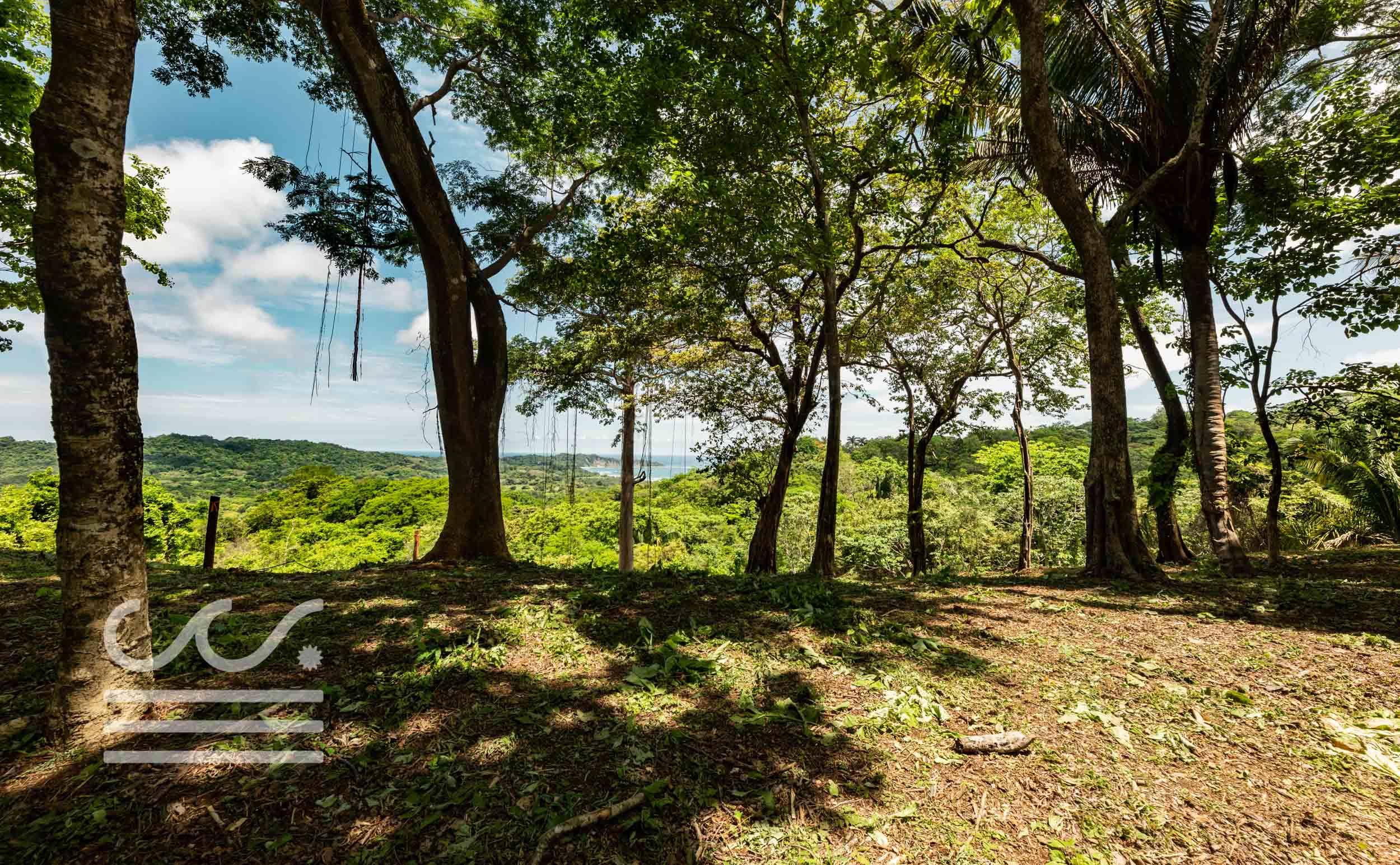 EE-102-Lot-Wanderlust-Realty-Real-Estate-Nosara-Costa-Rica-9.jpg