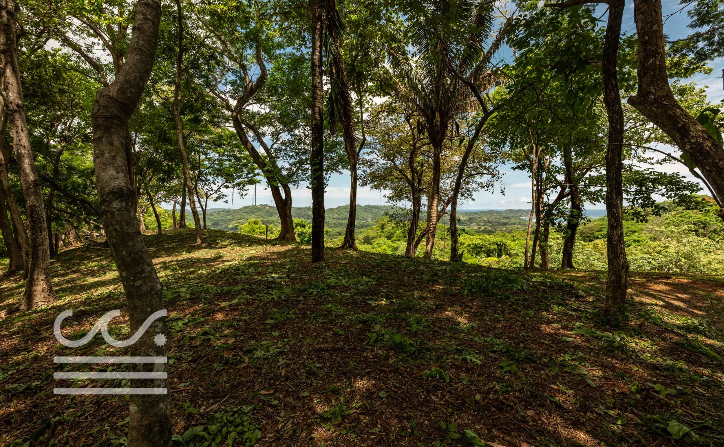 EE-102-Lot-Wanderlust-Realty-Real-Estate-Nosara-Costa-Rica-12.jpg