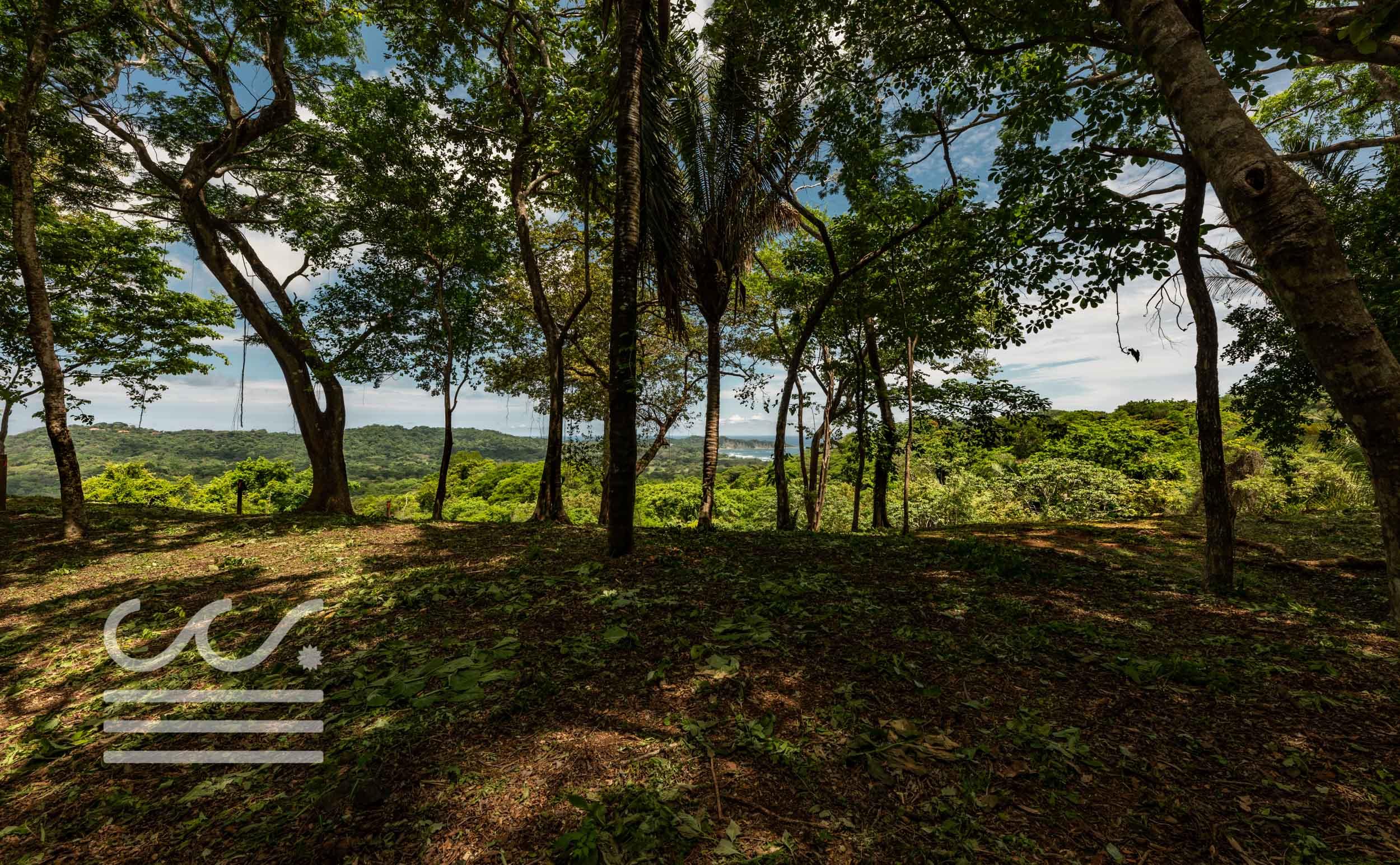 EE-102-Lot-Wanderlust-Realty-Real-Estate-Nosara-Costa-Rica-13.jpg