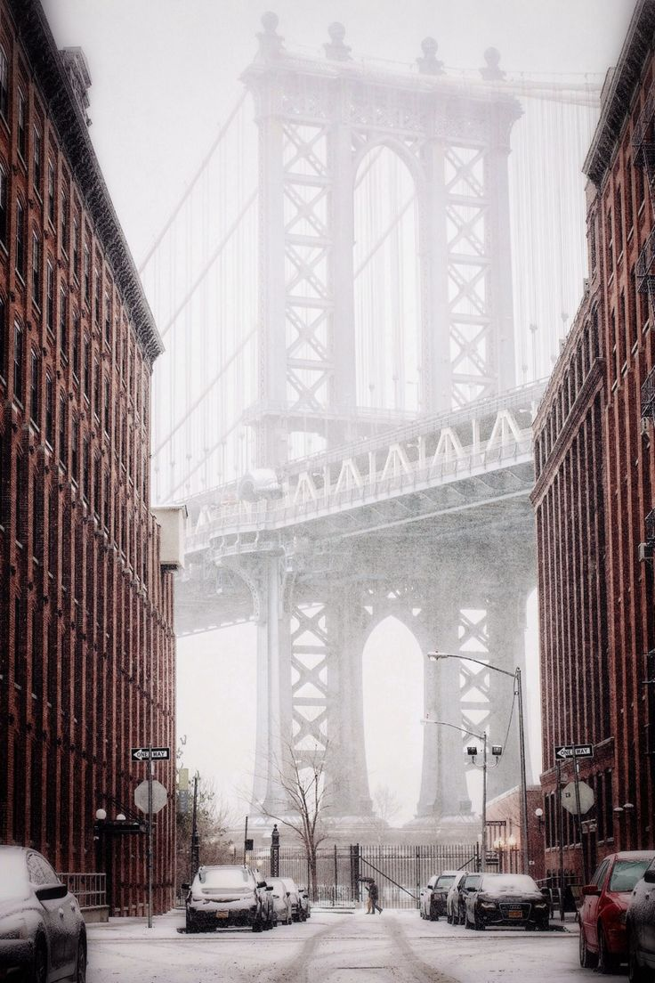 dumbo brooklyn snow