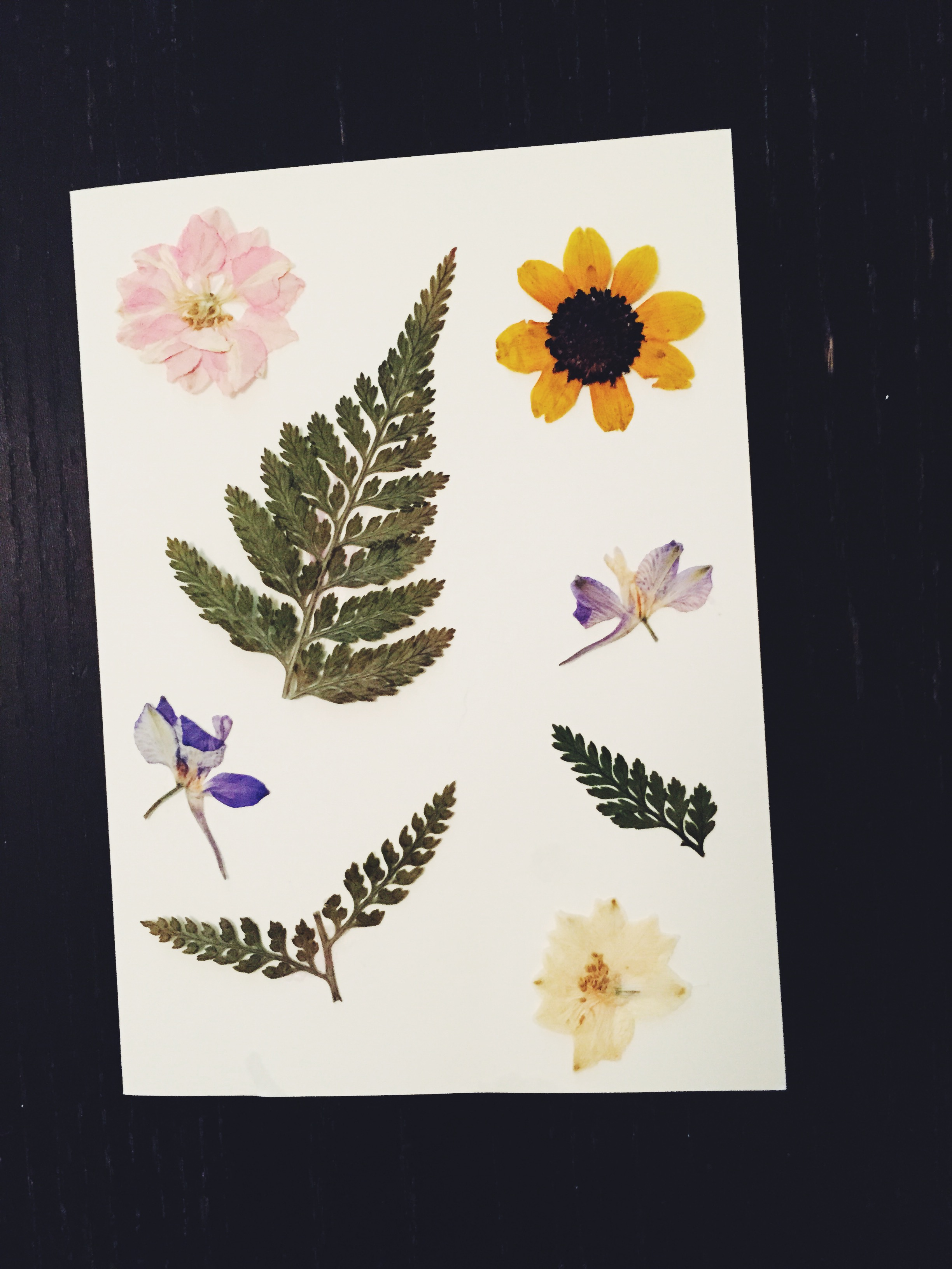 homemade wedding cards TSWIL