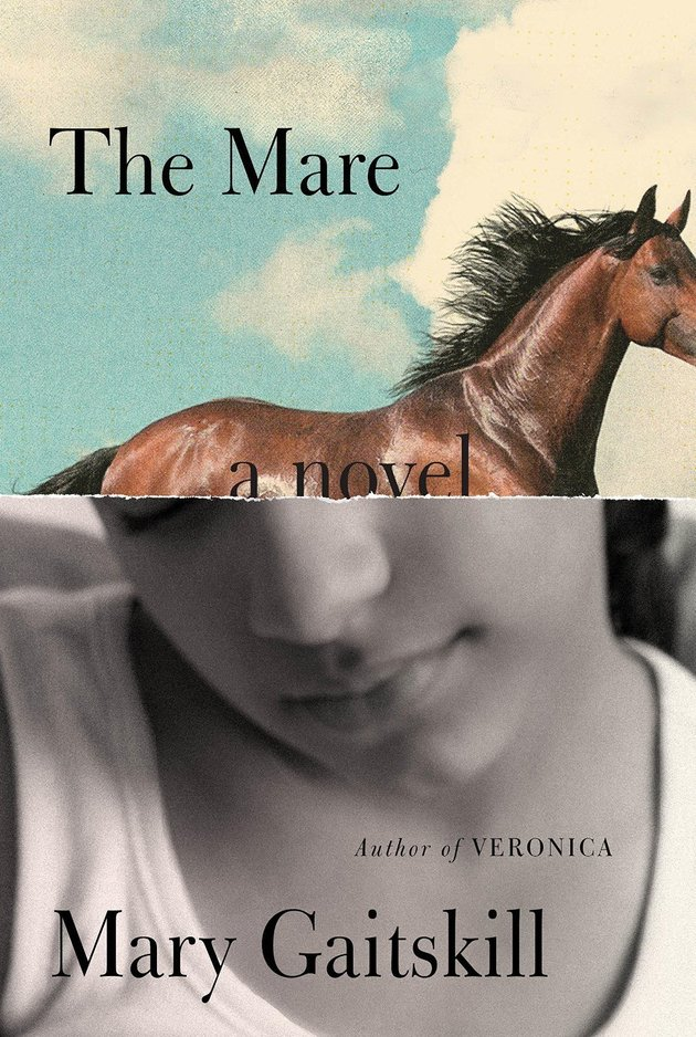 the mare mary gaitskill