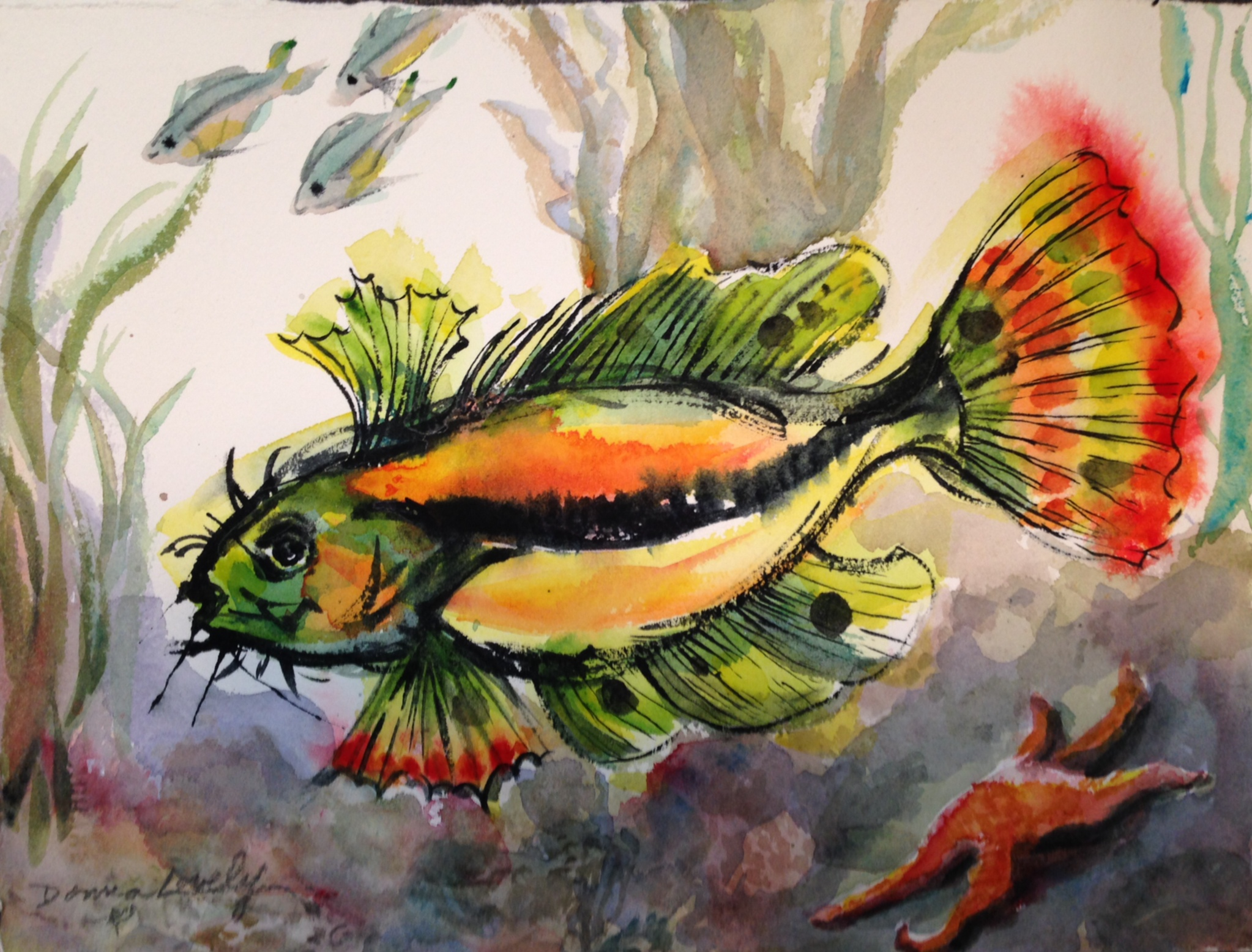 Colorful Fish - © Donna Lovely