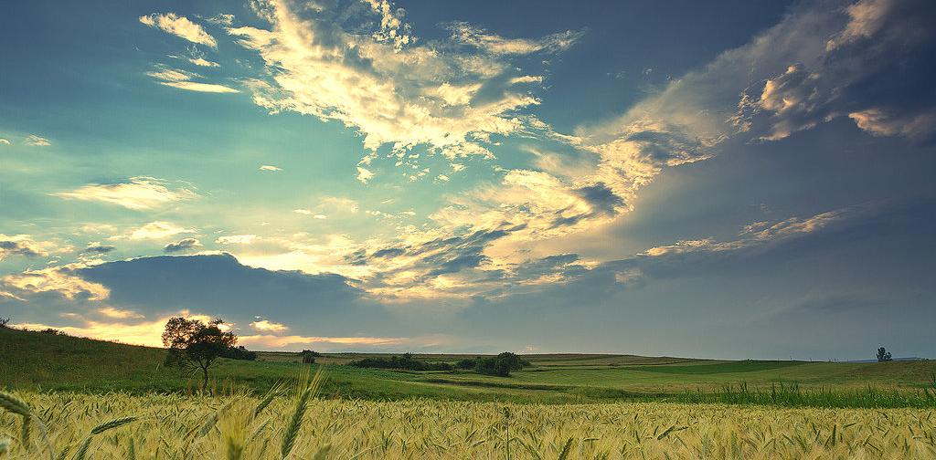 sky_on_the_country_by_iustyn-d3jurh6.jpg