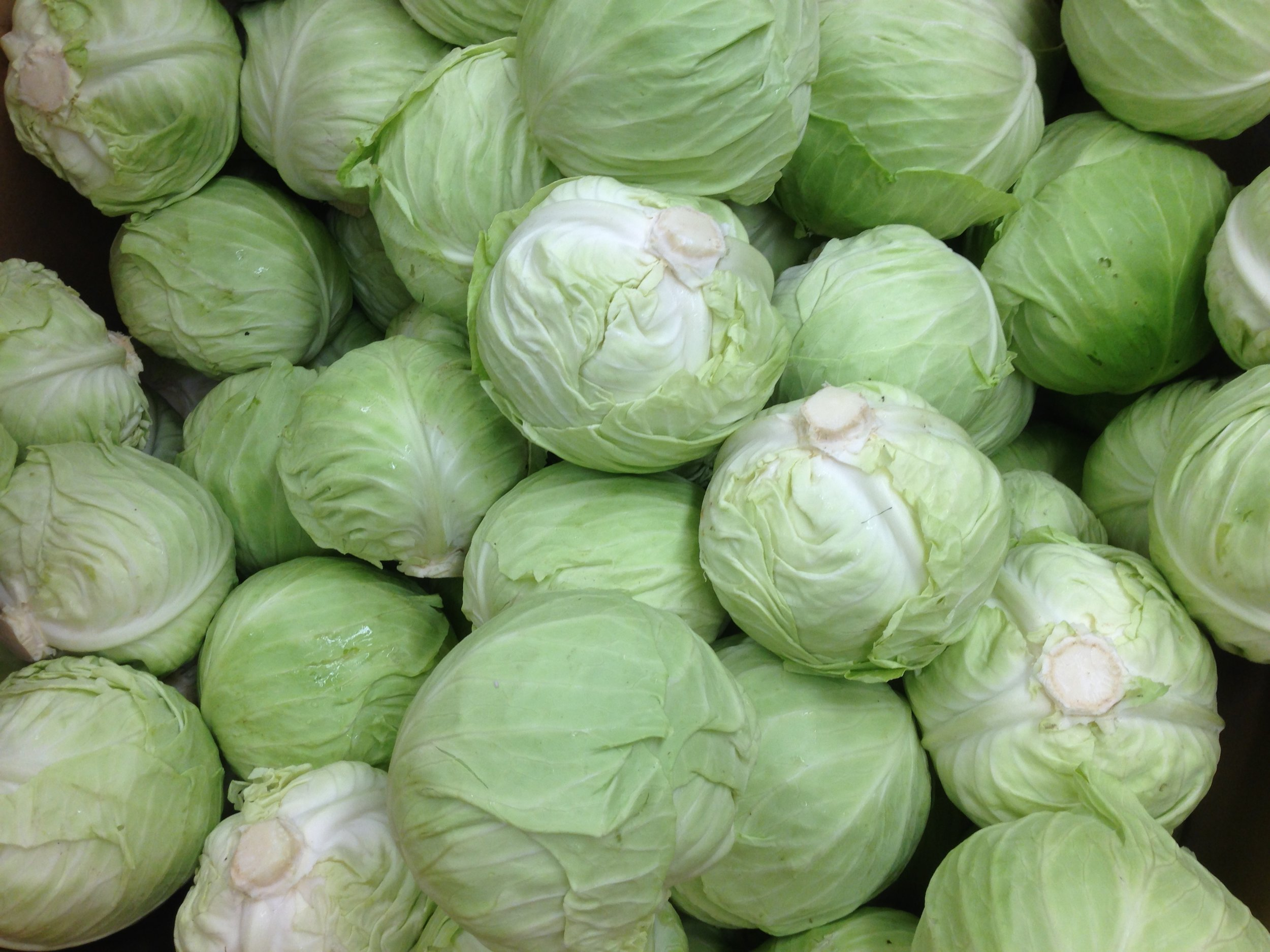 Start with fresh, organically grown head cabbage...
