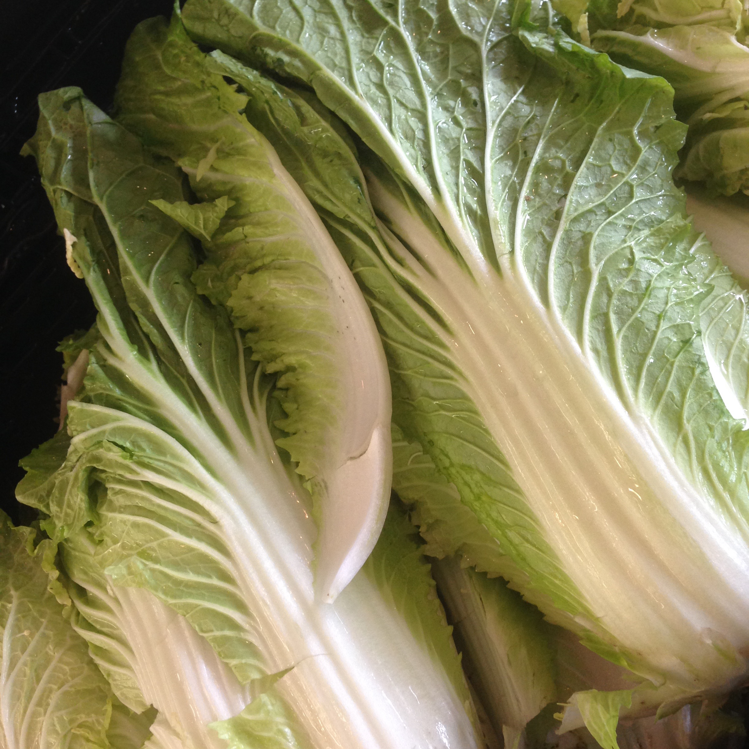 Start with fresh napa cabbage...