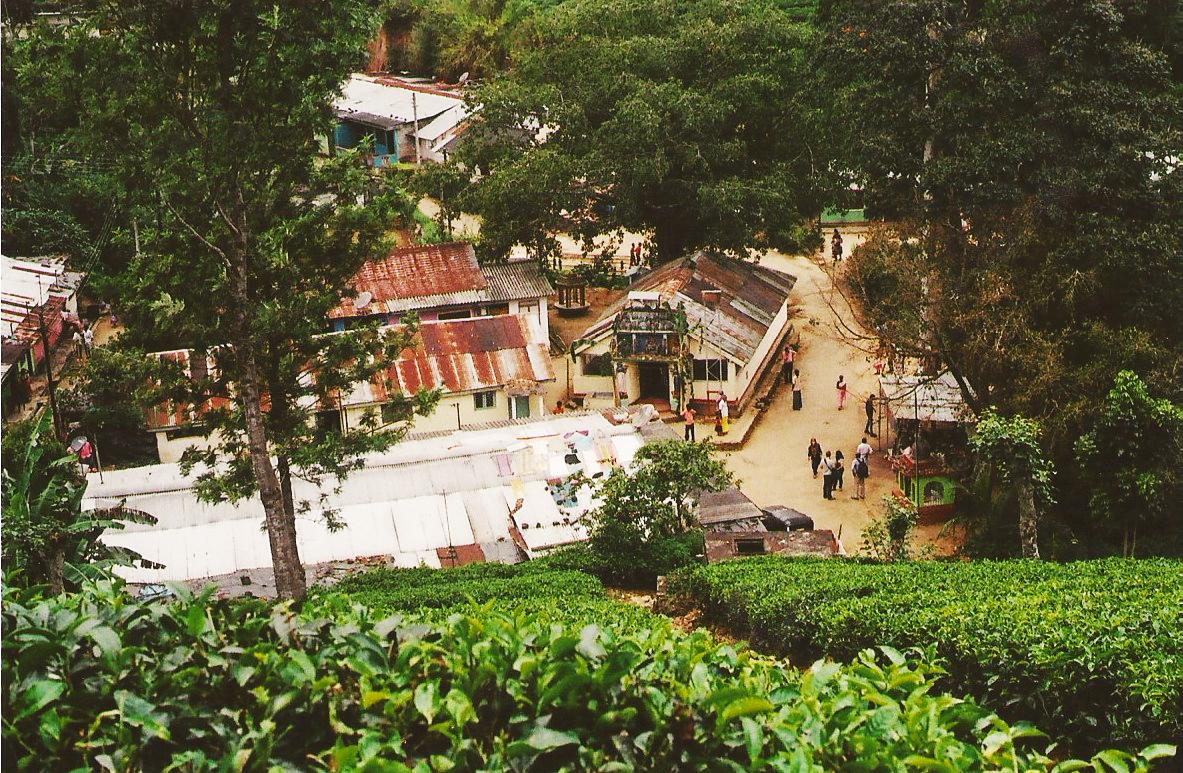 A tea village near Nuwara Eliya, home to Tamils, a minority ethnic group in Sri Lanka.