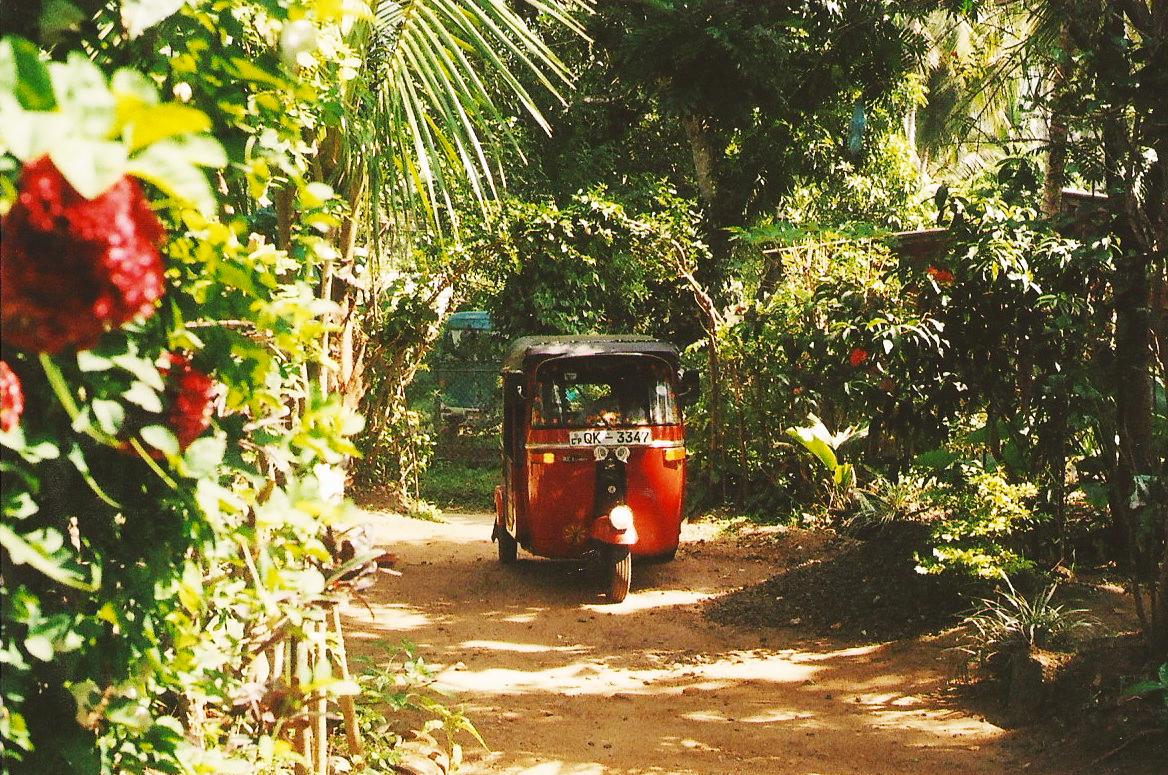 A red tuktuk in its natural habitat.