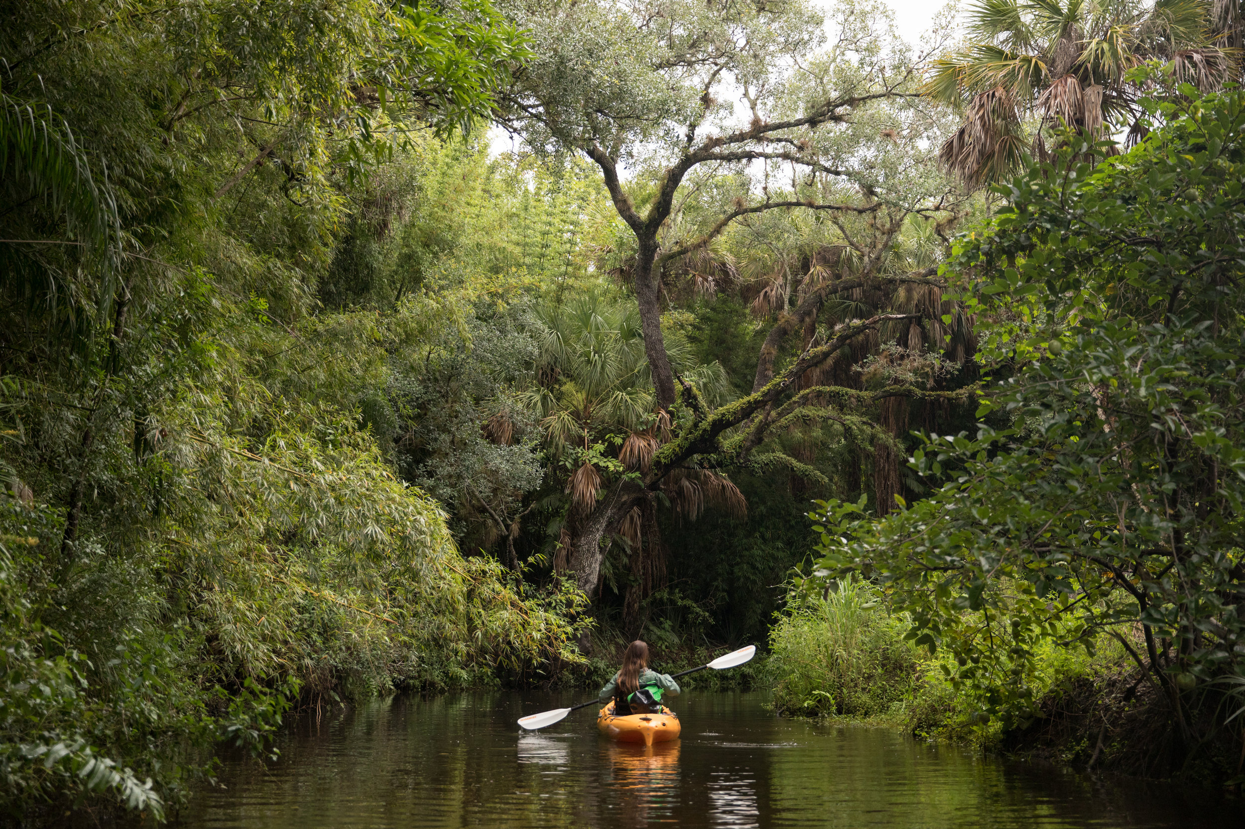 Florida-ElenaPressprich-118.jpg