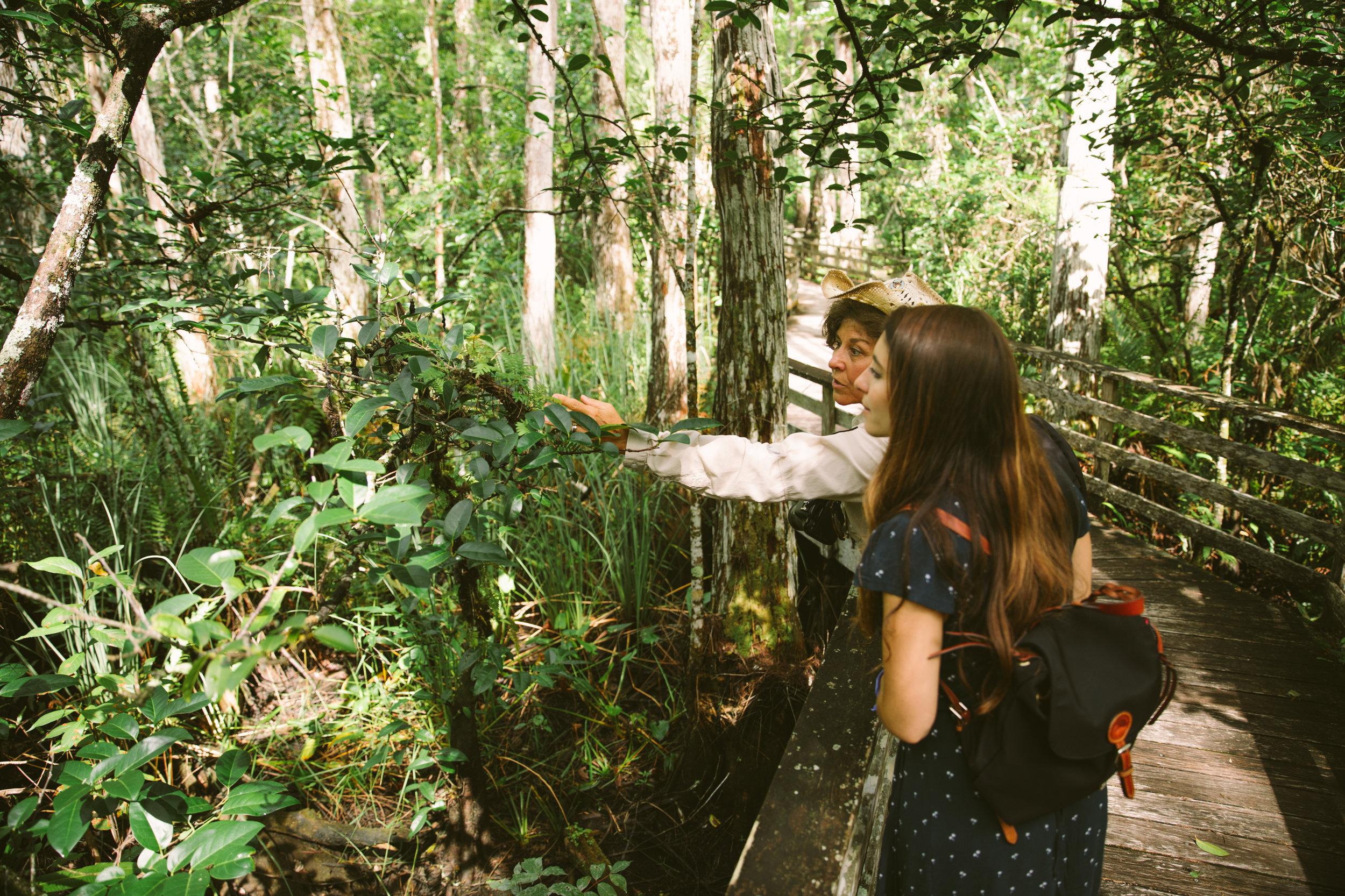 Florida-ElenaPressprich-16.jpg