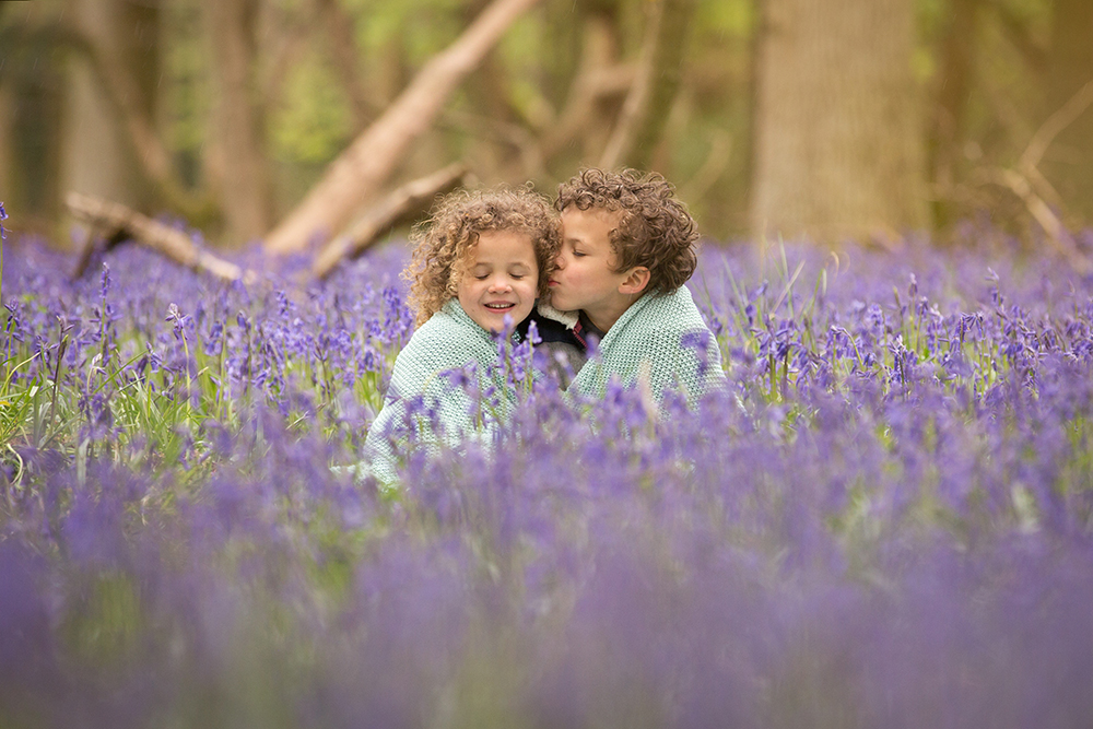 Bluebell photos Berkhamsted.jpg