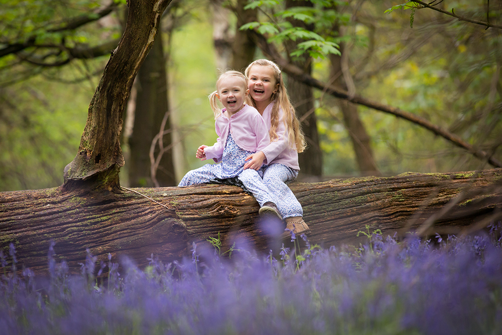 Photography Hertfordshire Bluebells.jpg