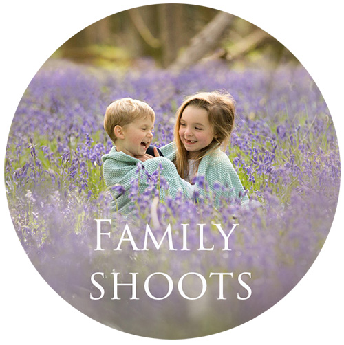 family gallery button.jpg