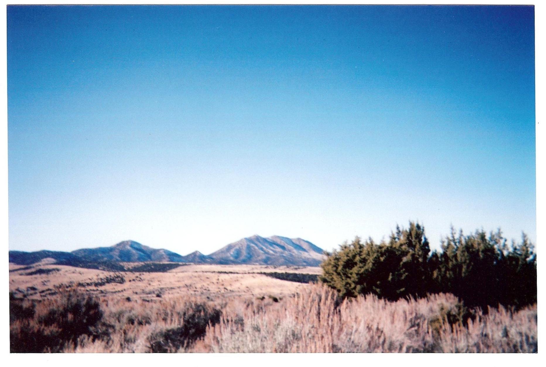 Wilderness 2012 002.jpg
