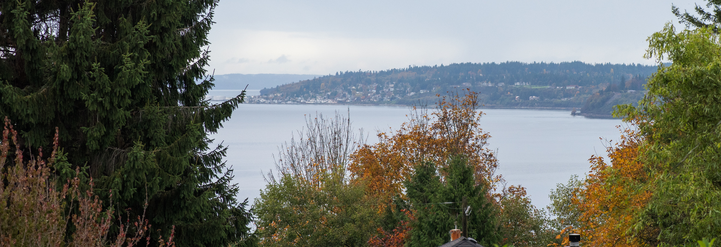 View of Puget Sound from the front deck