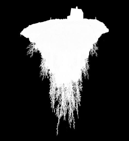 till death ISLAND INVERT.jpg
