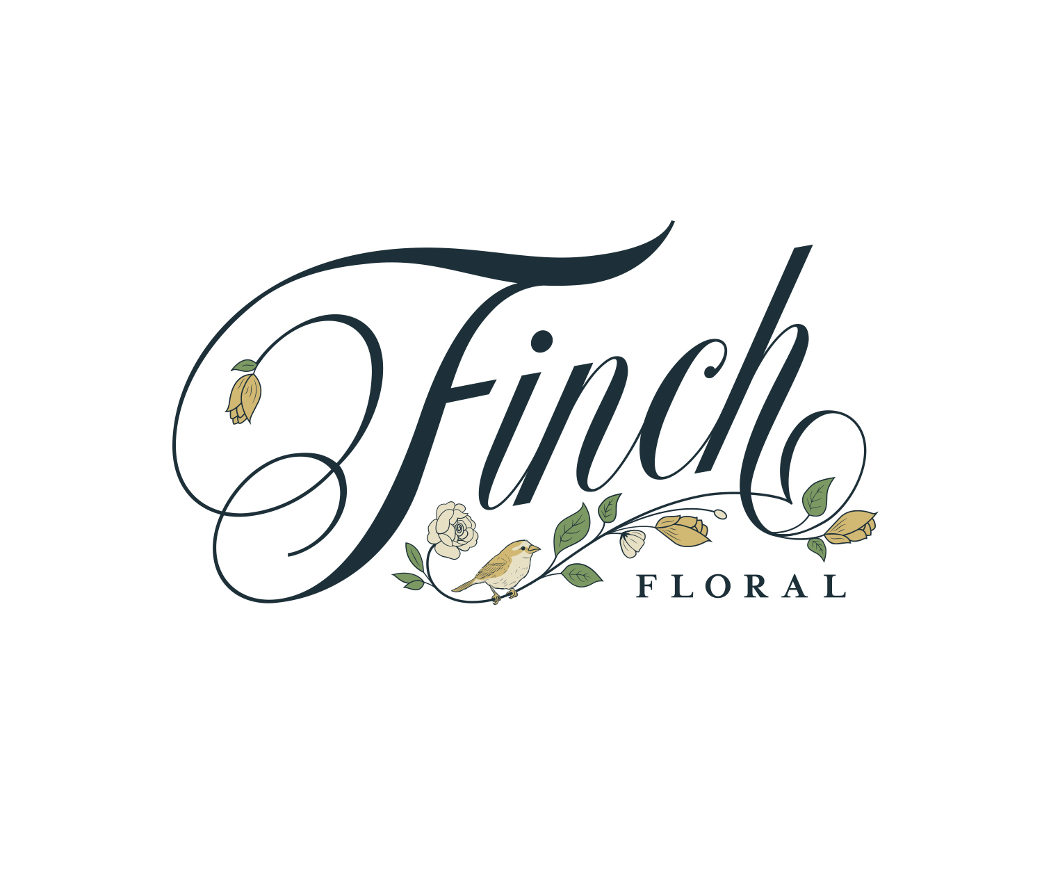 Finch Branding by Wink & Wonder