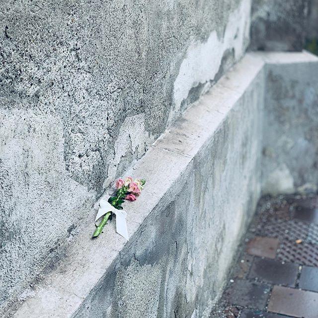 What's your story? . . . . . #wasserburg #bayern #inn #bavaria #story #storytime #geschichte #warum #why #flowers #blumen #kirche #church #whoisitfor #fürwen #geheimnis #secret