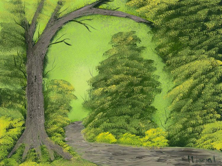 Wooded-Path.jpg