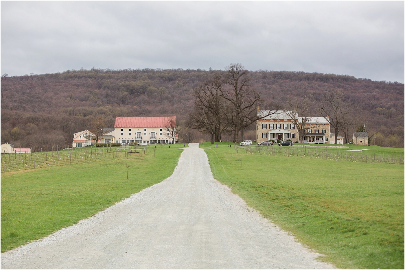 Springfield-manor-winery-wedding-1.jpg