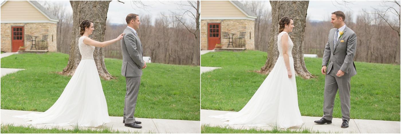 Springfield-manor-winery-wedding-52.jpg