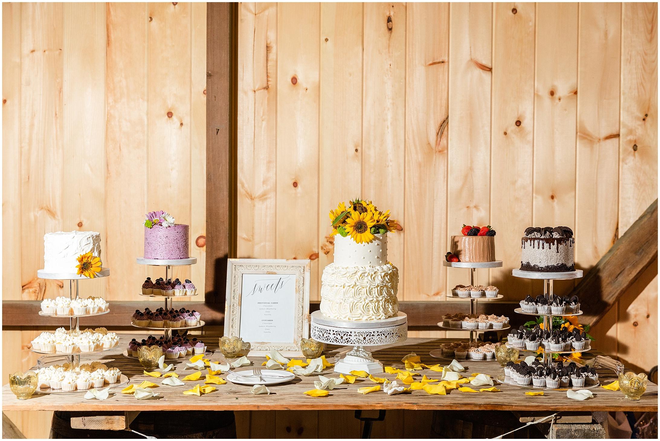 Montagu-Meadows-Wedding-Photos-933.jpg