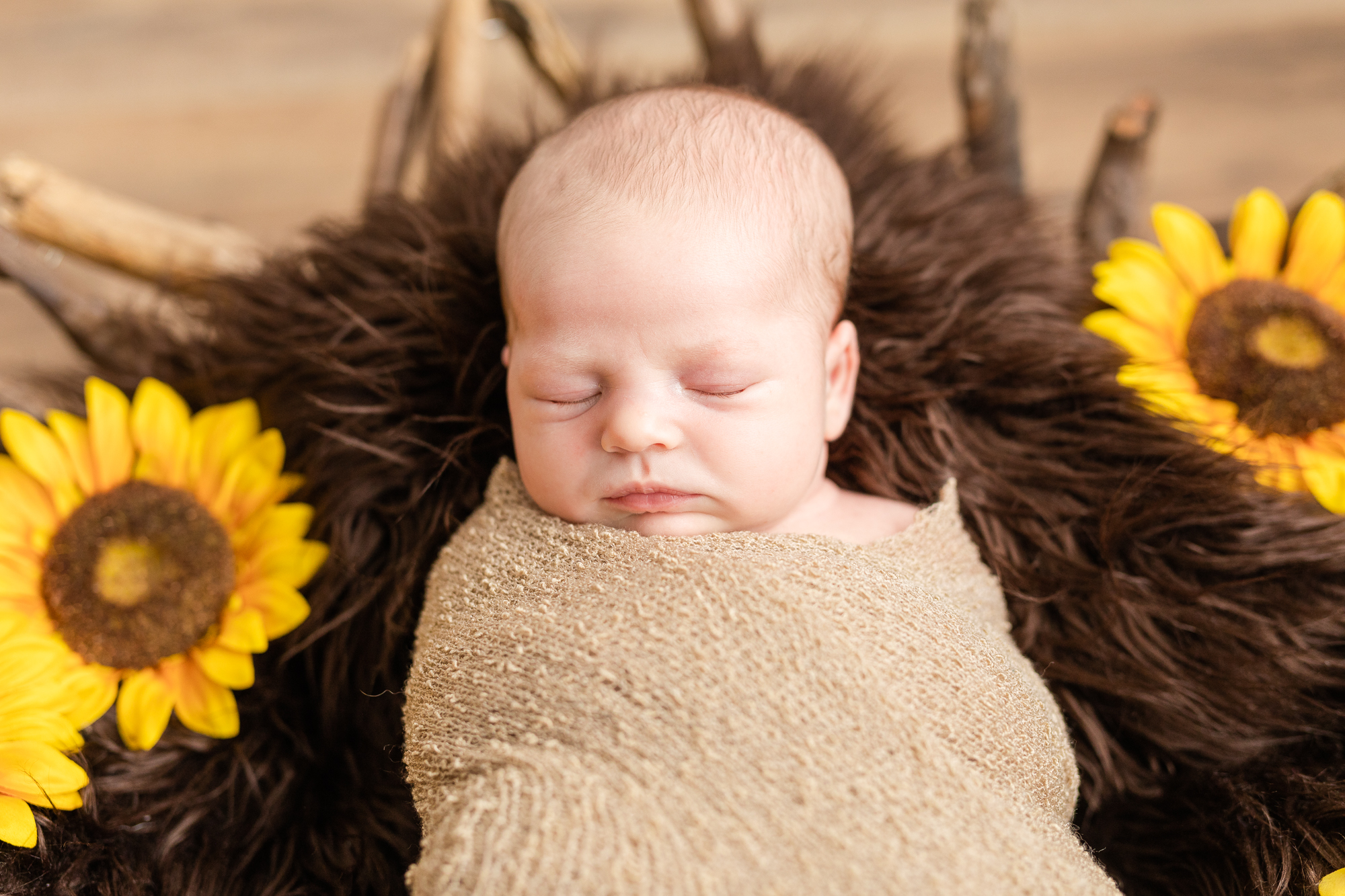 maryland-newborn-photographer-103.jpg