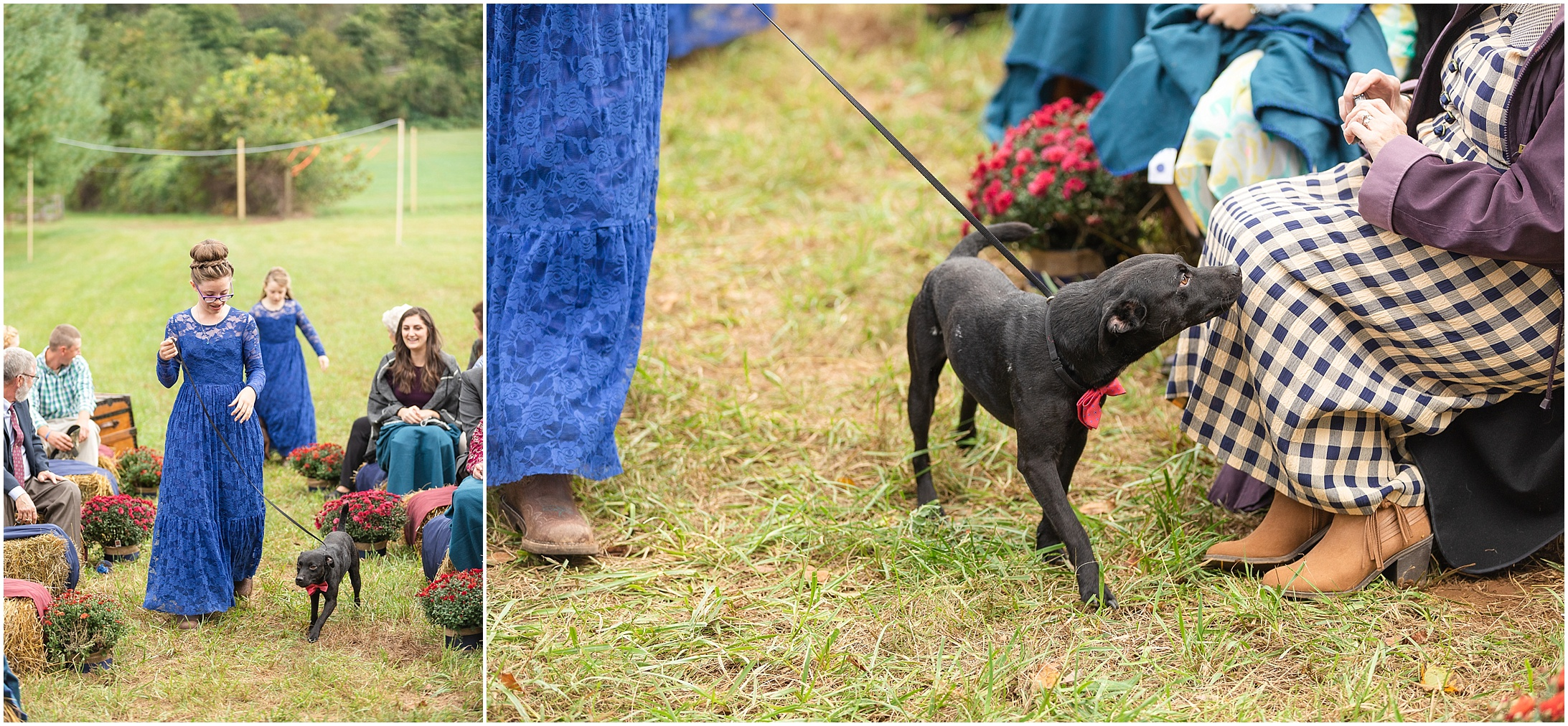 Maryland-Farm-Wedding-Photos_0273.jpg