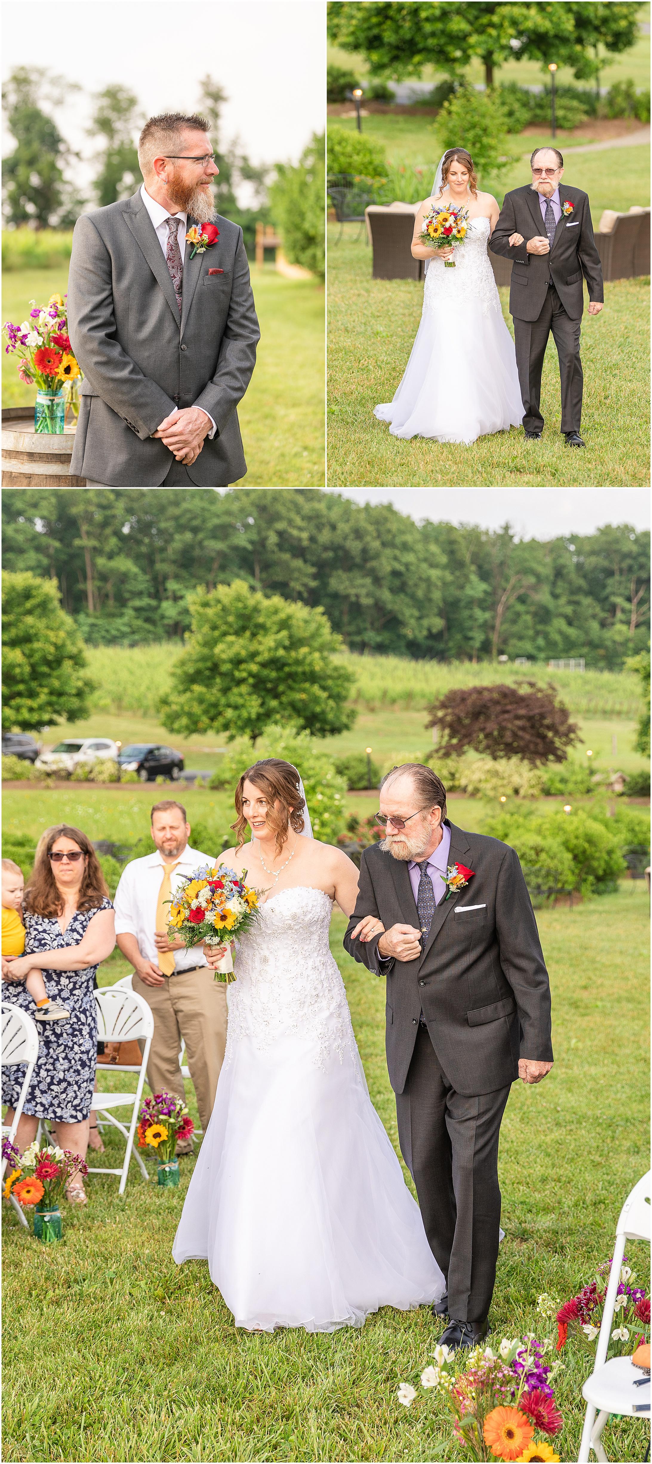 Black-Ankle-Vineyard-wedding_0368.jpg