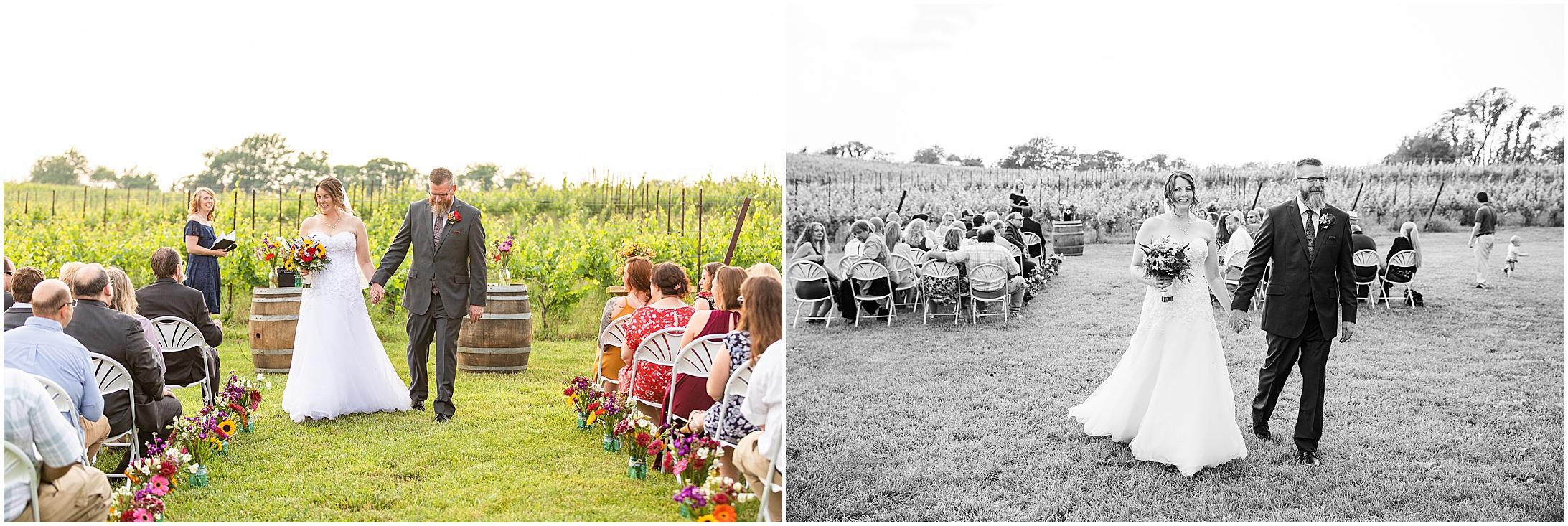 Black-Ankle-Vineyard-wedding_0370.jpg