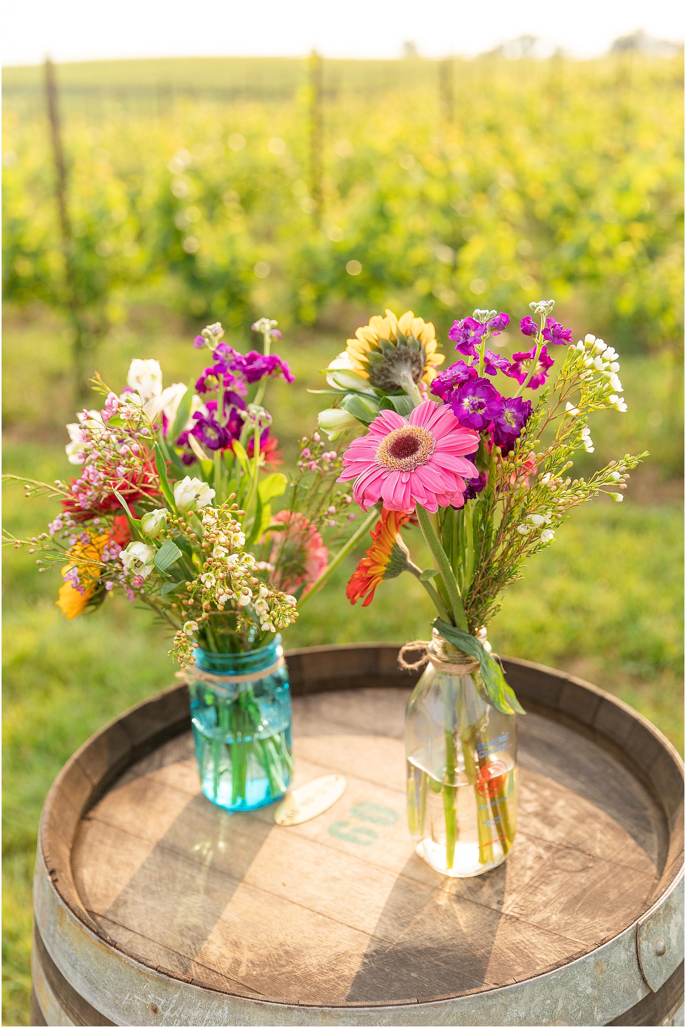 Black-Ankle-Vineyard-wedding_0371.jpg