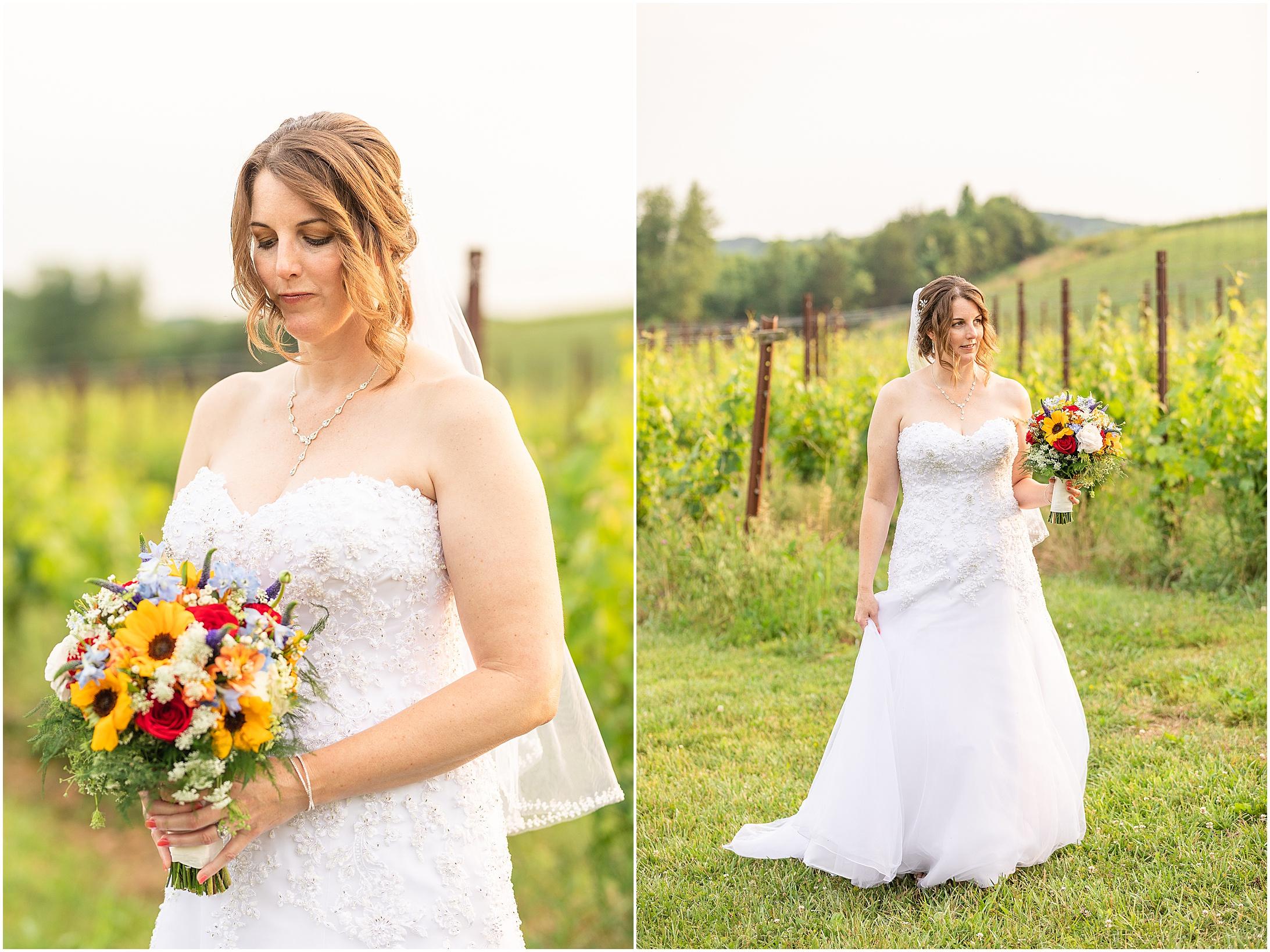 Black-Ankle-Vineyard-wedding_0373.jpg