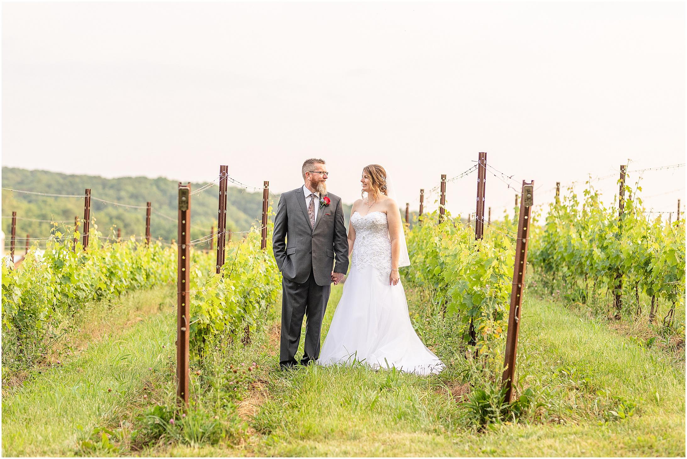 Black-Ankle-Vineyard-wedding_0383.jpg