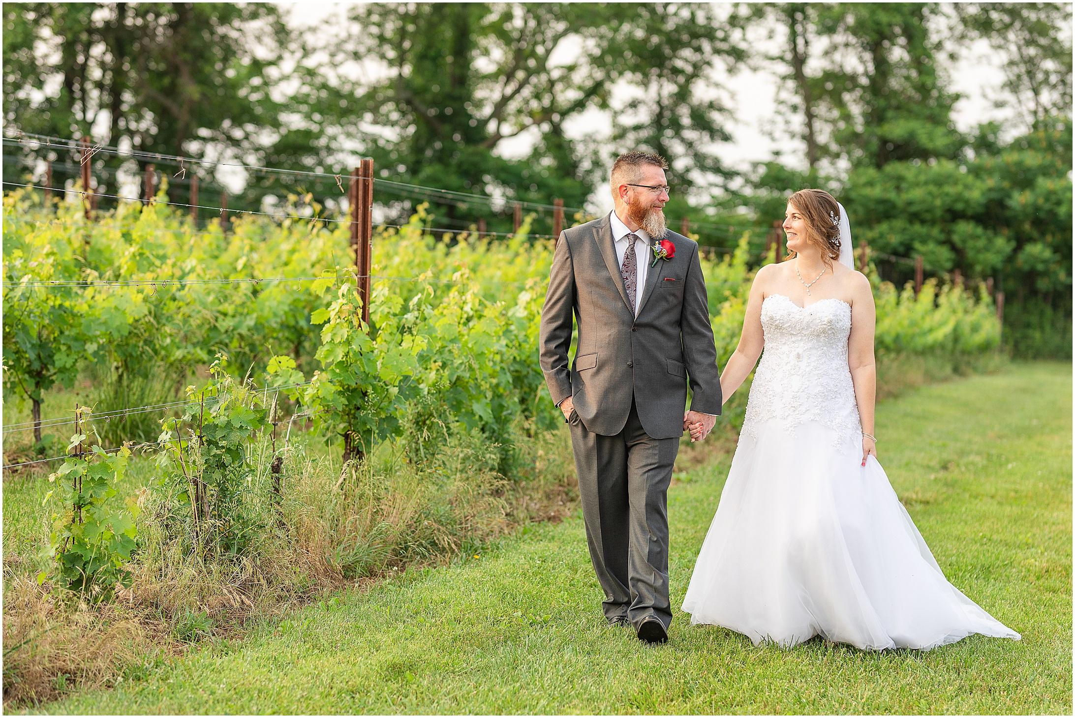 Black-Ankle-Vineyard-wedding_0387.jpg