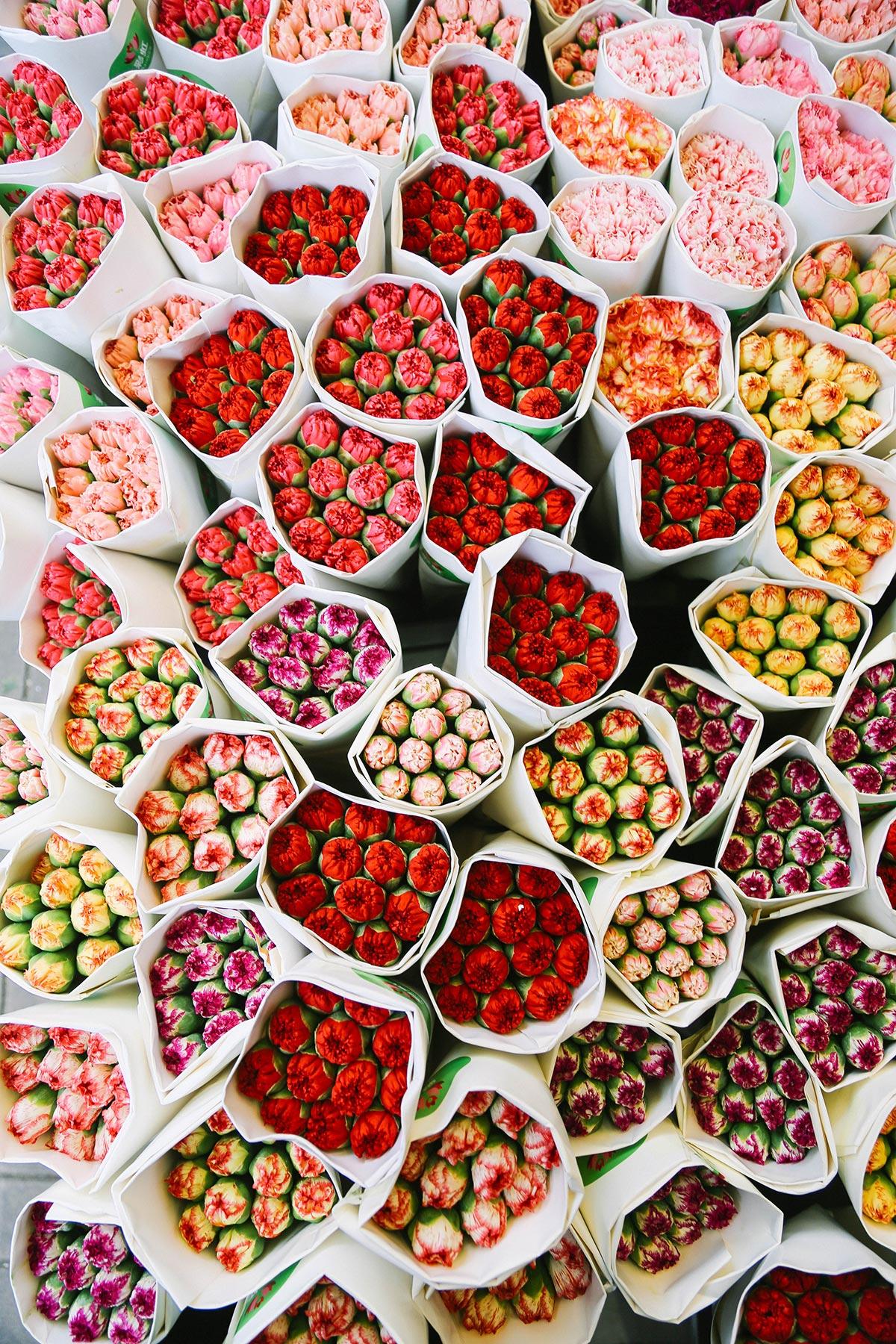 ashleigh-leech-hong-kong-flower-market-1.jpg