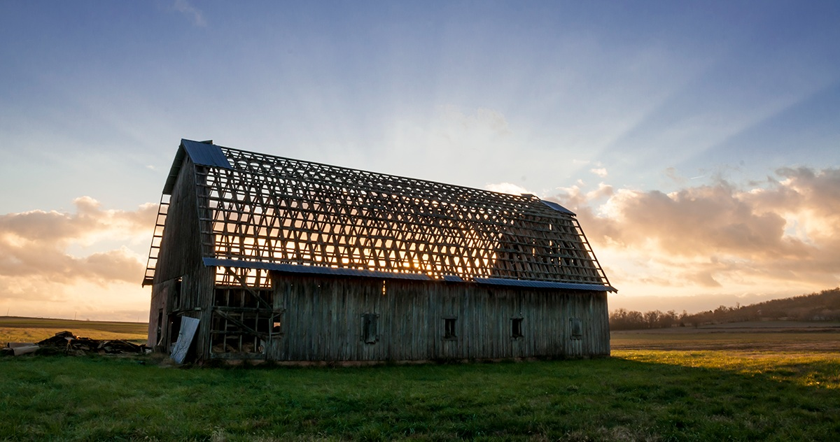 Hindsville Barn, DEMX Architecture Investigation