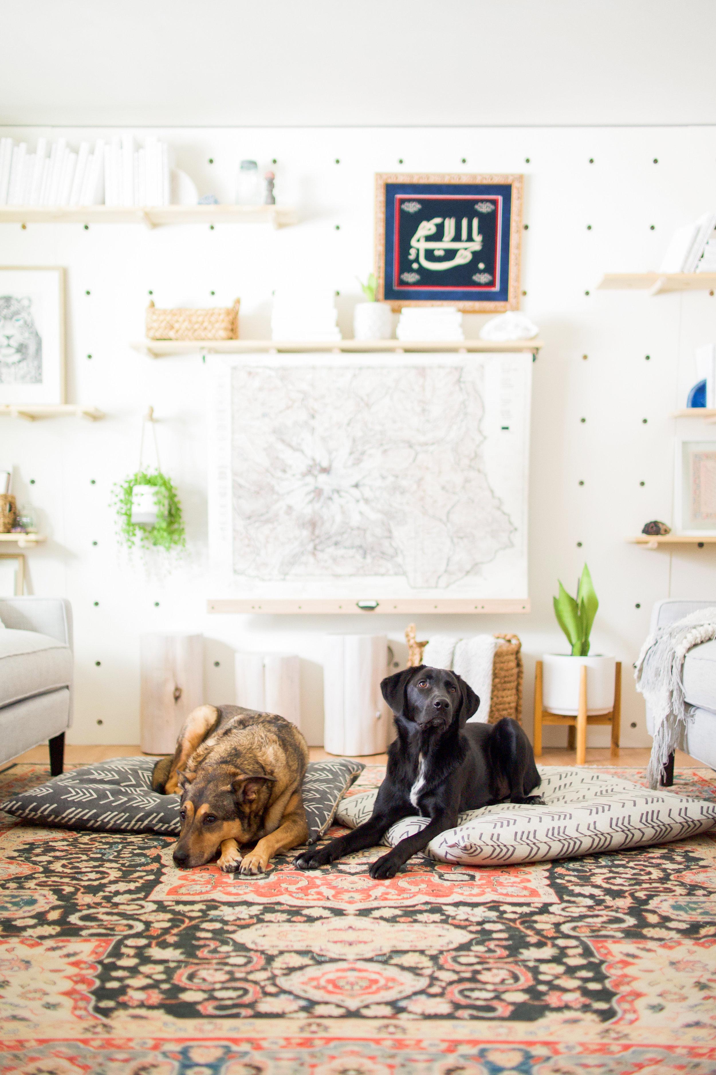 Foggy Dog dog beds -