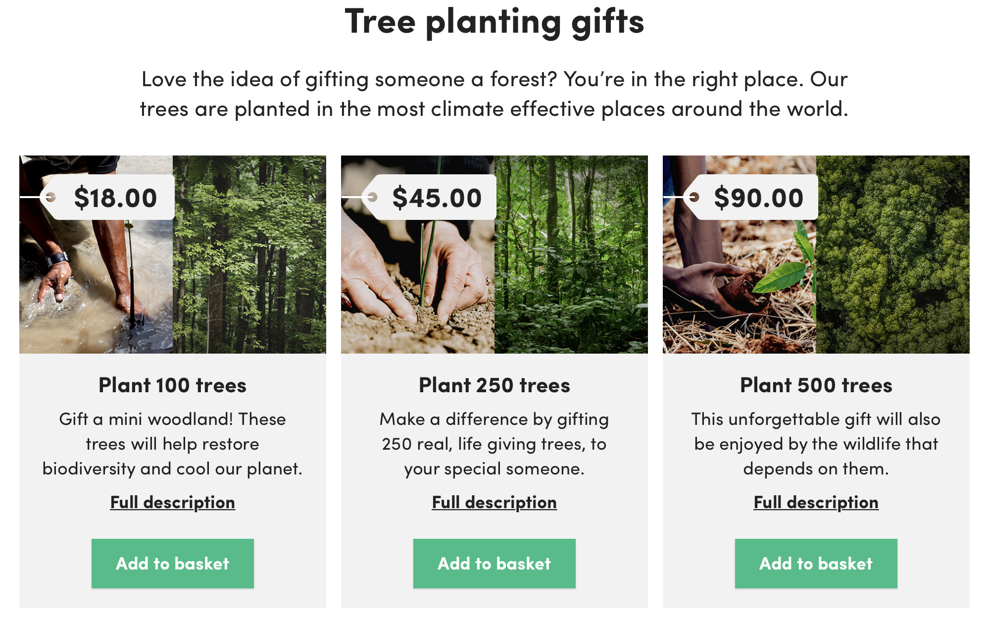 Have you ever thought about offsetting your carbon footprint? Ecologi is a great way to do that. You can offset your carbon footprint by paying for the planting of trees in big clumps or by a monthly or yearly subscription.