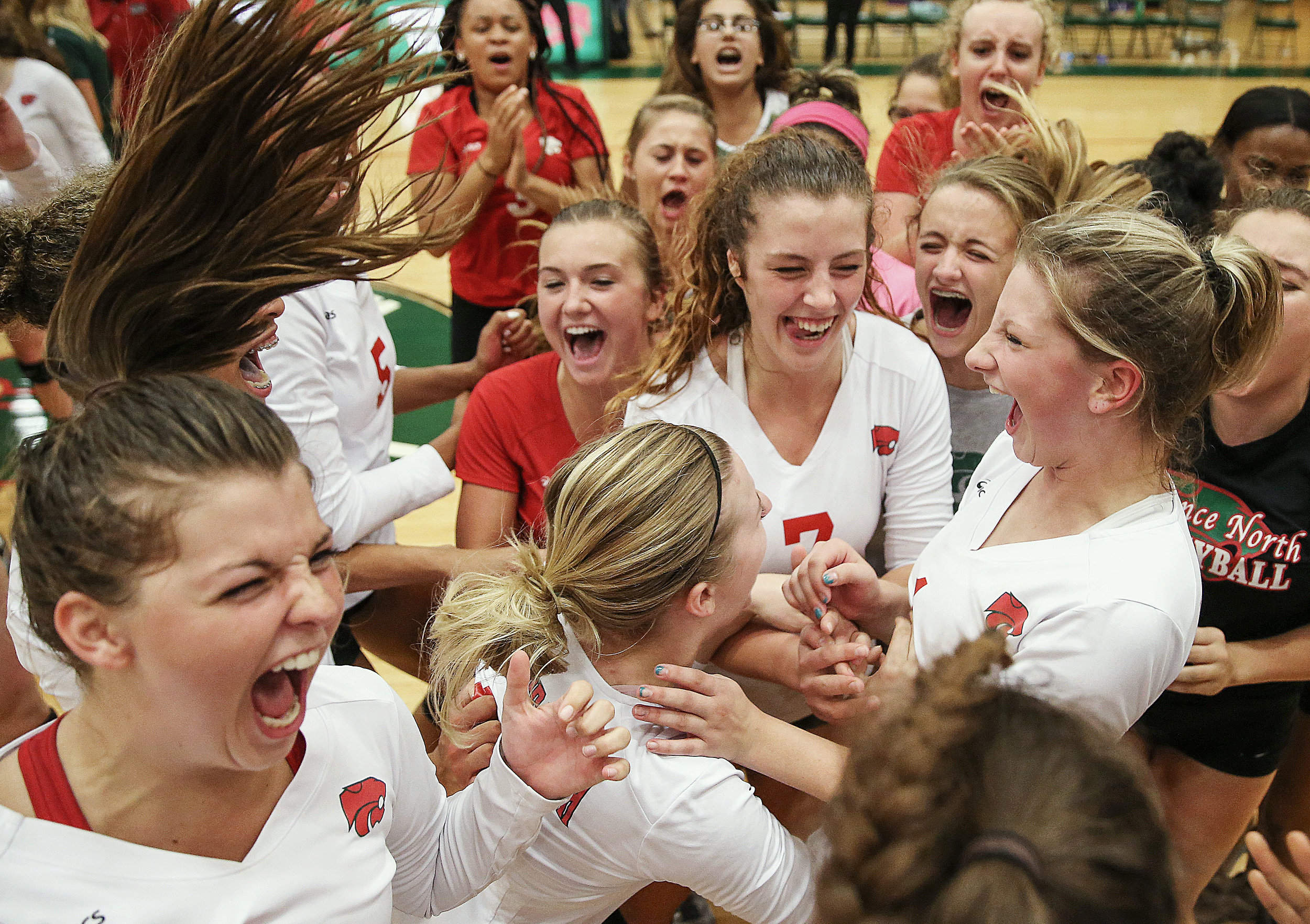 Players from Lawrence North varsity volleyball celebrate after defeating Cathedral for the first time in five years, at Lawrence North High School, Indianapolis, Thursday, September 8, 2016.