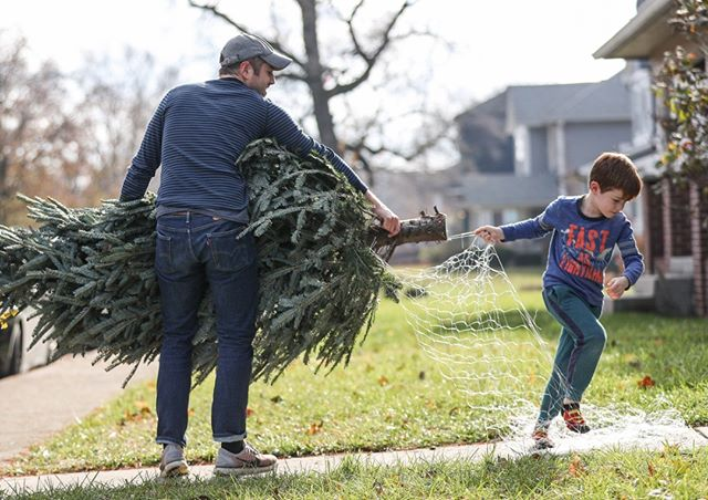 Robert Lyon and his son Ezra, 5, worked to unwrap a live Christmas tree before bringing it into their Kennedy King home in Indianapolis this afternoon. (Follow the photographer  @jennajulyaugust) • • • #christmastree #christmas #holidays #winter