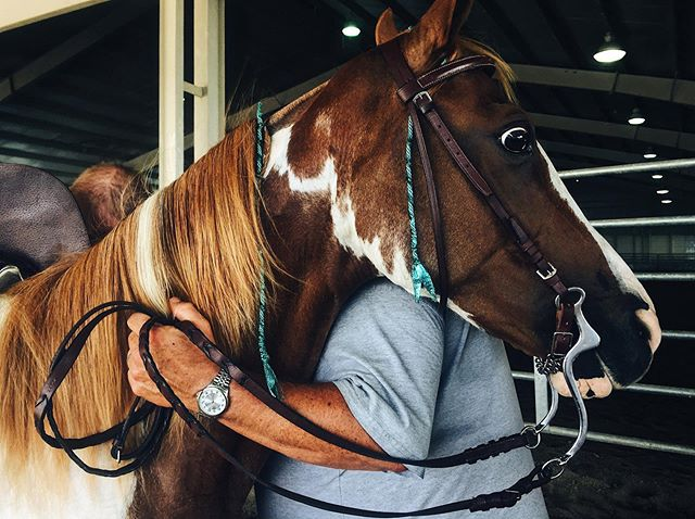 Henry County 4H fair | 7.18.19 • • • #4H #horse #vsco #vscocam