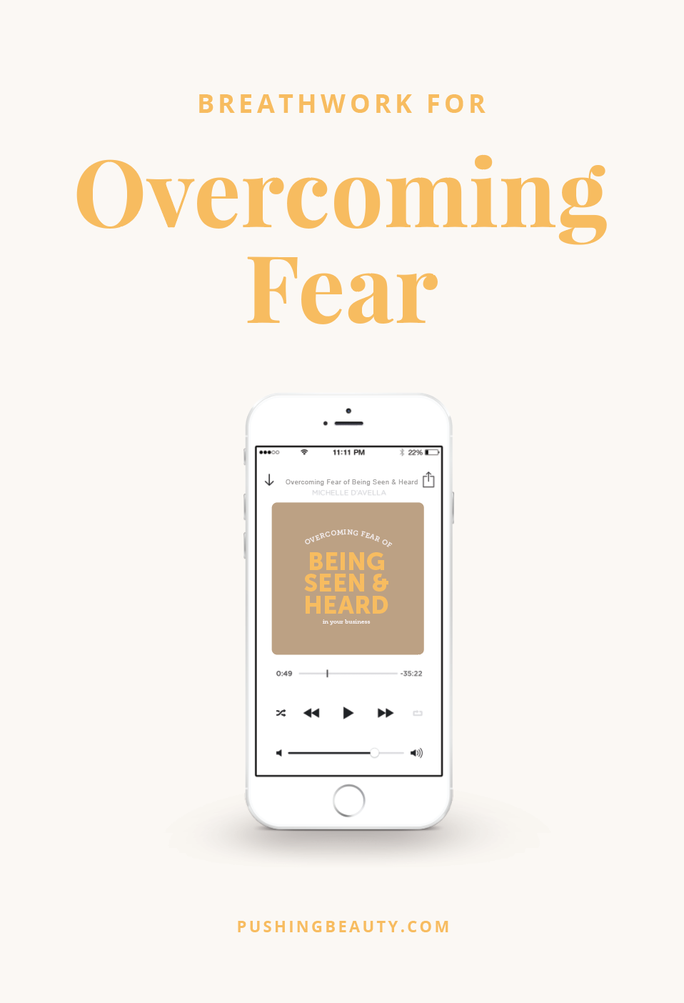 overcoming-fear-of-being-seen-and-heard-business-07.png