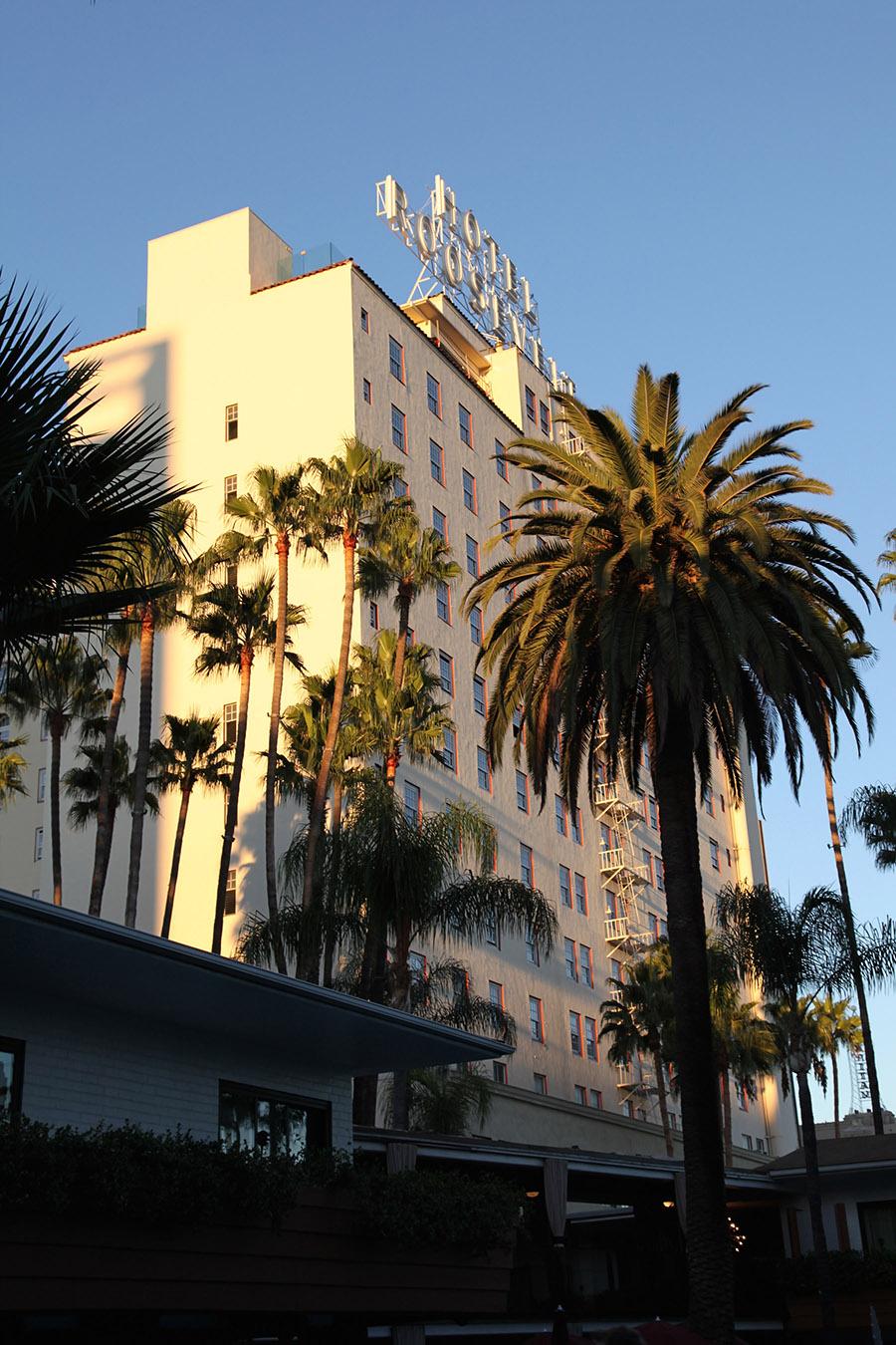John Miziolek Hollywood.jpg