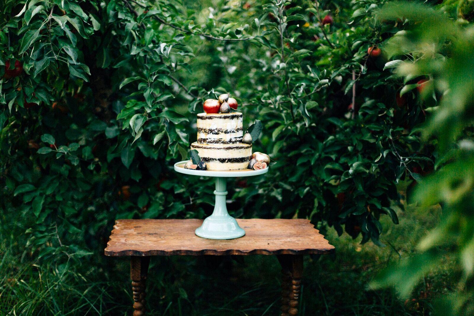 The Sassy Cupcake || Dawn Photography