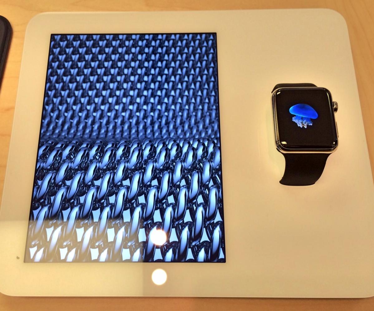 The Apple Watch demo unit.