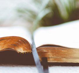 A Step-by-Step Primer for Church Discipline
