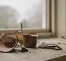 A Testimony of Restoration