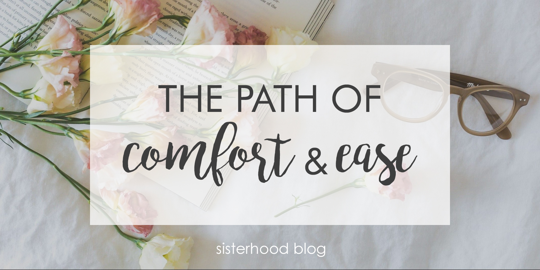 path of comfort.jpg